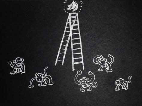monkeys_01