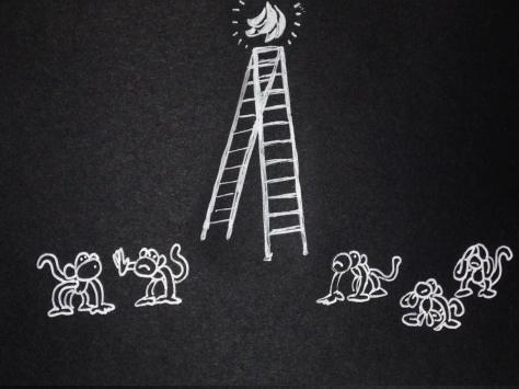 monkeys_04