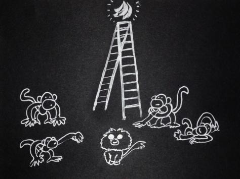 monkeys_05