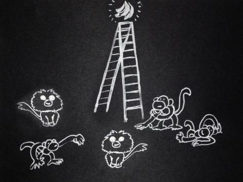 monkeys_07a