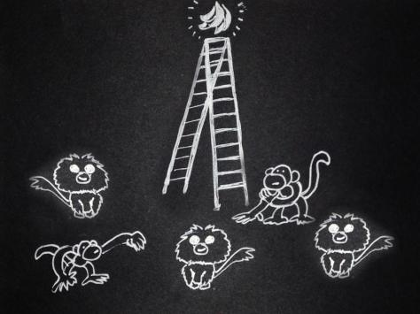 monkeys_07b