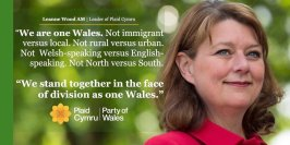 wearewales_woodleanne